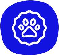 petair tiertransport icon hundepfote